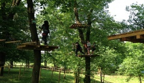 Il parco Treeexperience